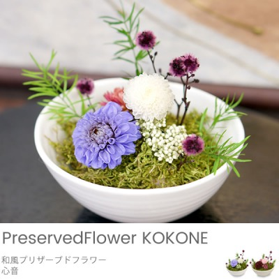 belvy_flower_1