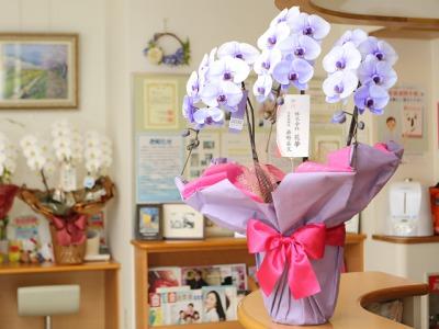 hanayume_flower2