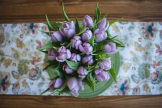 紫色のチューリップ