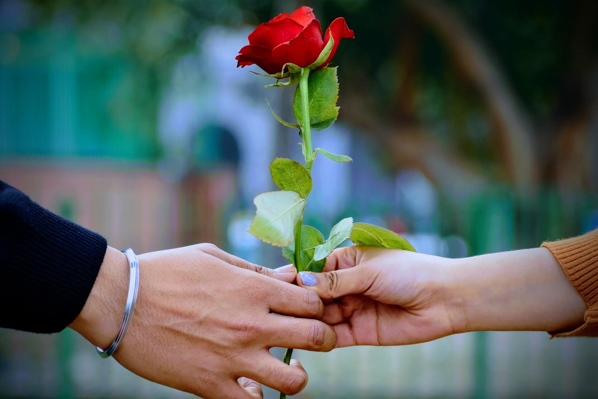 プロポーズで渡す花束のイメージ5